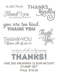 One Big Meaning Clear Mount Stamp Set