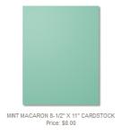 138337 Mint Macaron CS